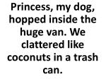princess my dog hopped inside the huge van we clattered like coconuts in a trash can