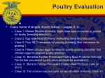 poultry evaluation