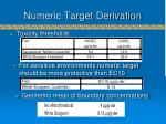 numeric target derivation