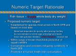 numeric target rationale