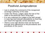 positivist jurisprudence