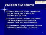 developing your initiatives