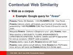 contextual web similarity2