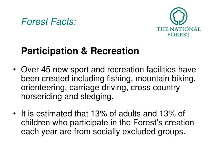 forest facts n.