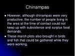 chinampas