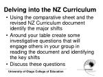delving into the nz curriculum