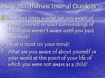 more mindfulness journal quickies