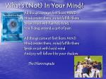 what s not in your mind