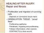 healing after injury repair and fibrosis