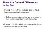 there are cultural differences in the self1