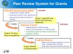 peer review system for grants