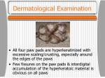 dermatological examination