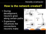 how is the network created