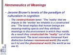 hermeneutics of meanings7