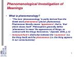 phenomenological investigation of meanings