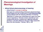 phenomenological investigation of meanings12