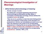 phenomenological investigation of meanings13