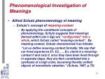 phenomenological investigation of meanings14