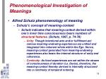 phenomenological investigation of meanings15