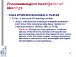 phenomenological investigation of meanings16