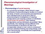 phenomenological investigation of meanings17