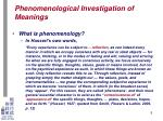 phenomenological investigation of meanings2