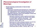 phenomenological investigation of meanings21