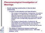 phenomenological investigation of meanings24