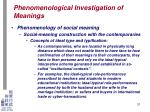 phenomenological investigation of meanings26