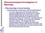 phenomenological investigation of meanings29