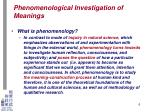 phenomenological investigation of meanings3