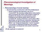 phenomenological investigation of meanings30