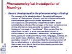 phenomenological investigation of meanings32