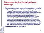 phenomenological investigation of meanings33