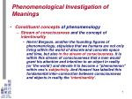 phenomenological investigation of meanings4