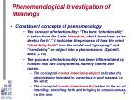 phenomenological investigation of meanings5