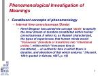 phenomenological investigation of meanings6