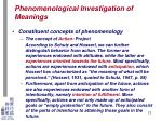 phenomenological investigation of meanings9