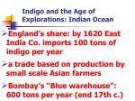 indigo and the age of explorations indian ocean3
