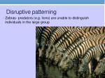 disruptive patterning