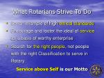 what rotarians strive to do