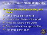what the rotary foundation does