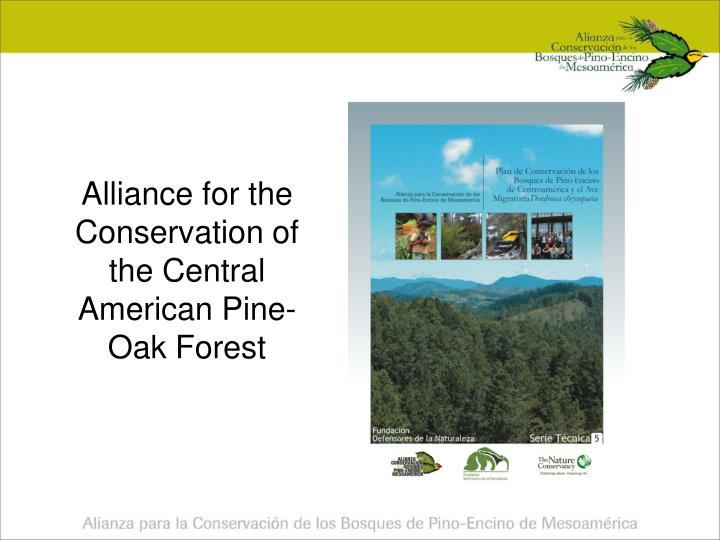 alliance for the conservation of the central american pine oak forest n.