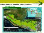 central american pine oak forest ecoregion 103 842 71 km 2