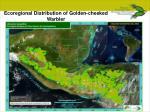 ecoregional distribution of golden cheeked warbler