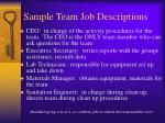 sample team job descriptions