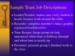 sample team job descriptions1